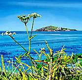 <br /> Towards Burgh Island through Cow Parsley, Bantham. <br /> Original Acrylic Painting On Paper, <br /> Image Size - 31.8 x 31.8 cm, <br /> Glazed and Framed, <br /> £475<br /> SOLD<br />
